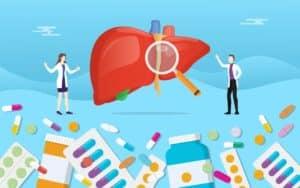 Gezonde lever voedingssupplementen